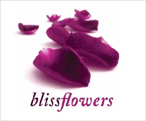 Bliss Flowers